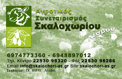 Bussiness-Card
